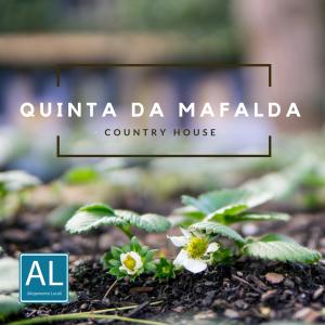 QUINTA DA MAFALDA II (1)